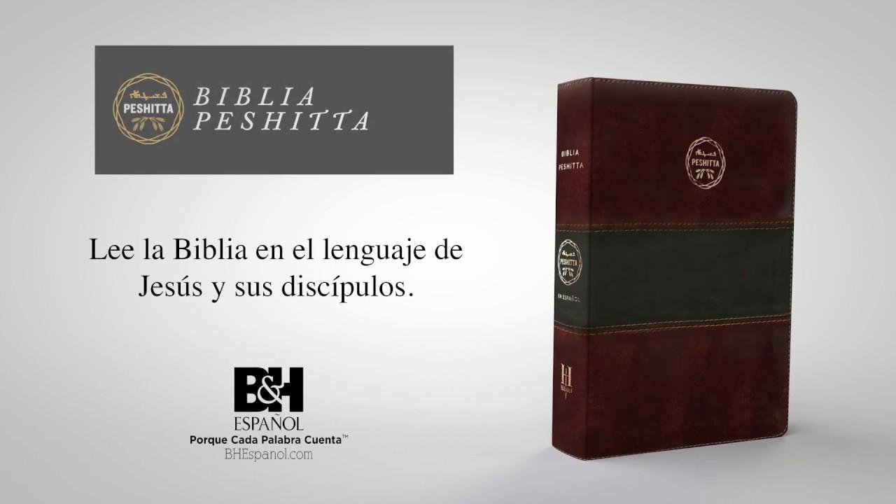 Descargar pdf la biblia peshita
