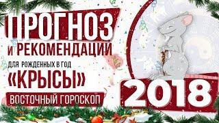 видео Восточный гороскоп на 2018 год для Крысы по месяцам