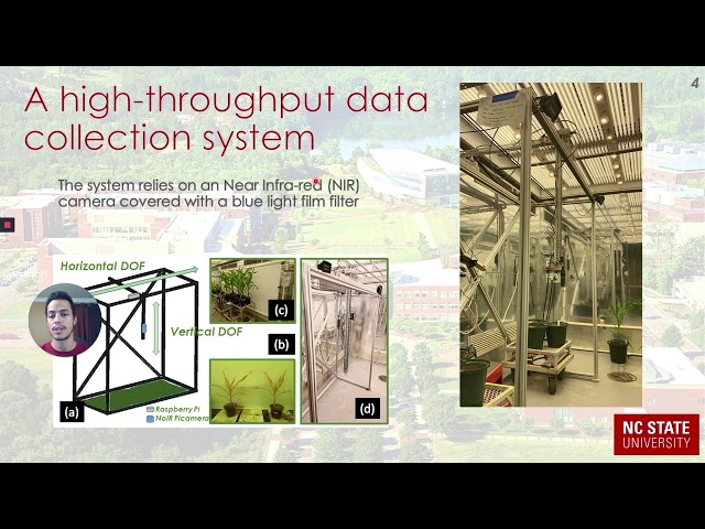 Water Stress Detection in Plants