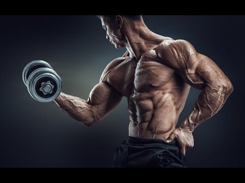 Most Epic Workout Motivational Mix  2 Hours Of Powerful Epic Music  Vol 1
