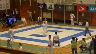和歌山国体 空手道 篠原vs保月 成年男子組手個人戦(中量級)