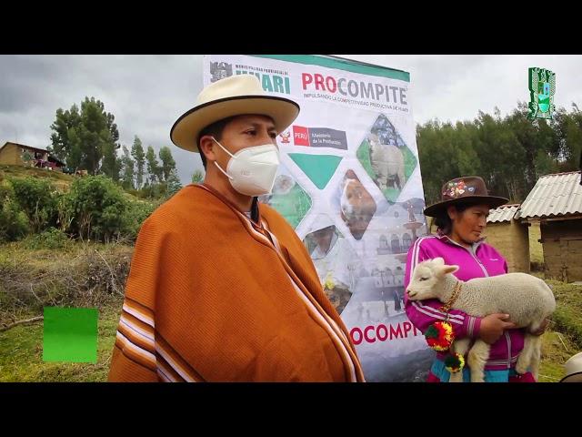PROCOMPITE: ENTREGA DE PRODUCTOS VETERINARIOS, INSUMOS Y ASISTENCIA TÉCNICA -  HUAMPARAN