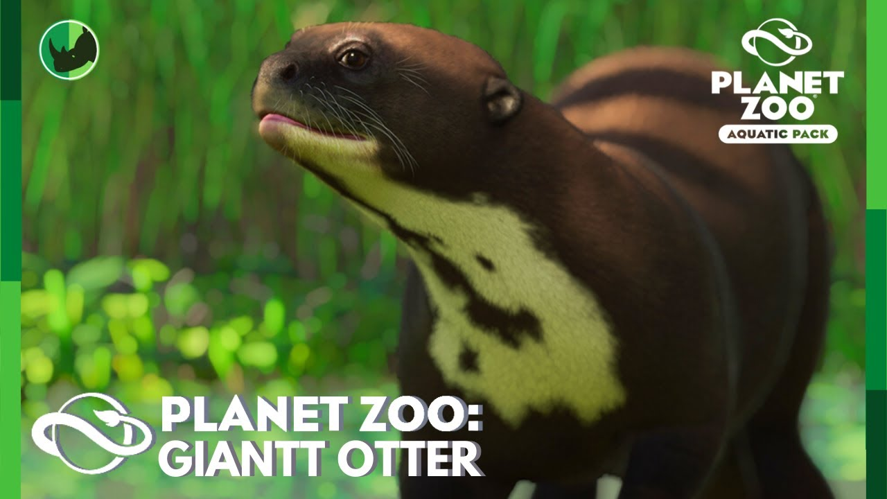 Giant Otter Reveal and Discussion! And Where to Find Glimpses of The New Animals | Planet Zoo