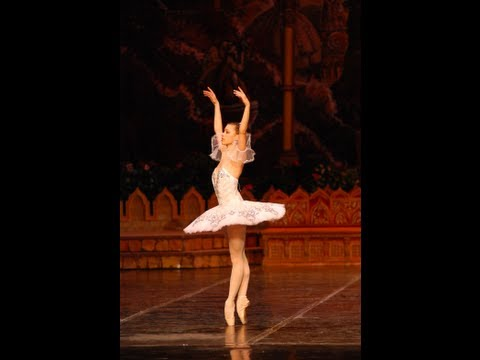 Ballet Lesson - Pirouettes