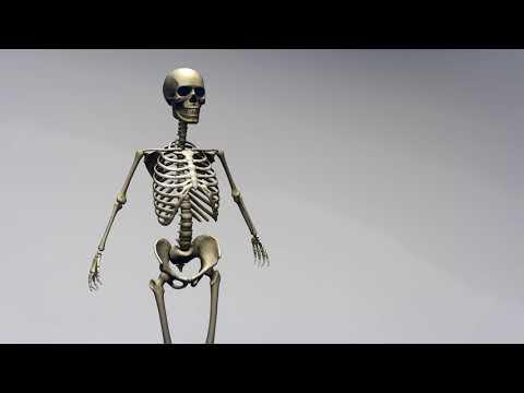 Почему человек быстро худеет причины? Почему человек может быстро похудеть?