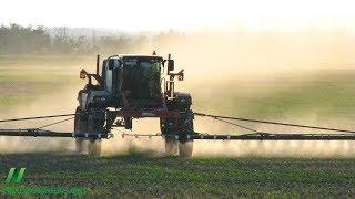 Jsou GMO potraviny bezpečné? Případ sóji Roundup-ready