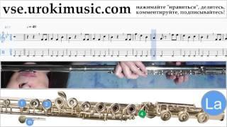 Уроки флейты Happy - Birthday Ноты Самоучитель часть 2 um-b821