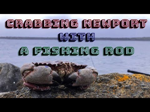 Crabbing The Newport Jetty Using A Fishing Rod Ft. Pk Yi (Crab Hawk)