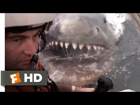 Jaws 2 (8/9) Movie CLIP - Helicopter Attack (1978) HD