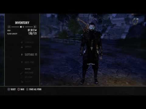 ESO: My Stamina Templar Build (2h/Bow)