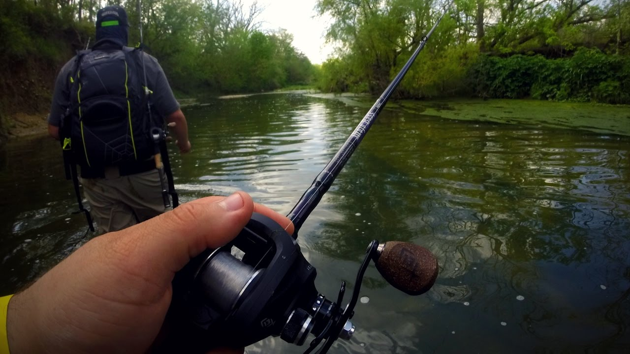 Cibolo creek wade fishing san antonio day 2 w elkheart for Bass fishing in san antonio