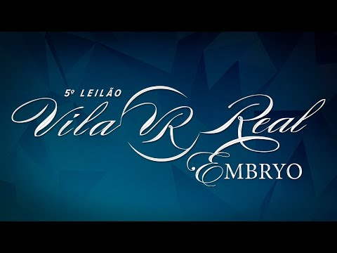 Lote 09   Reghina FIV VRI da Vila Real   VRI 28