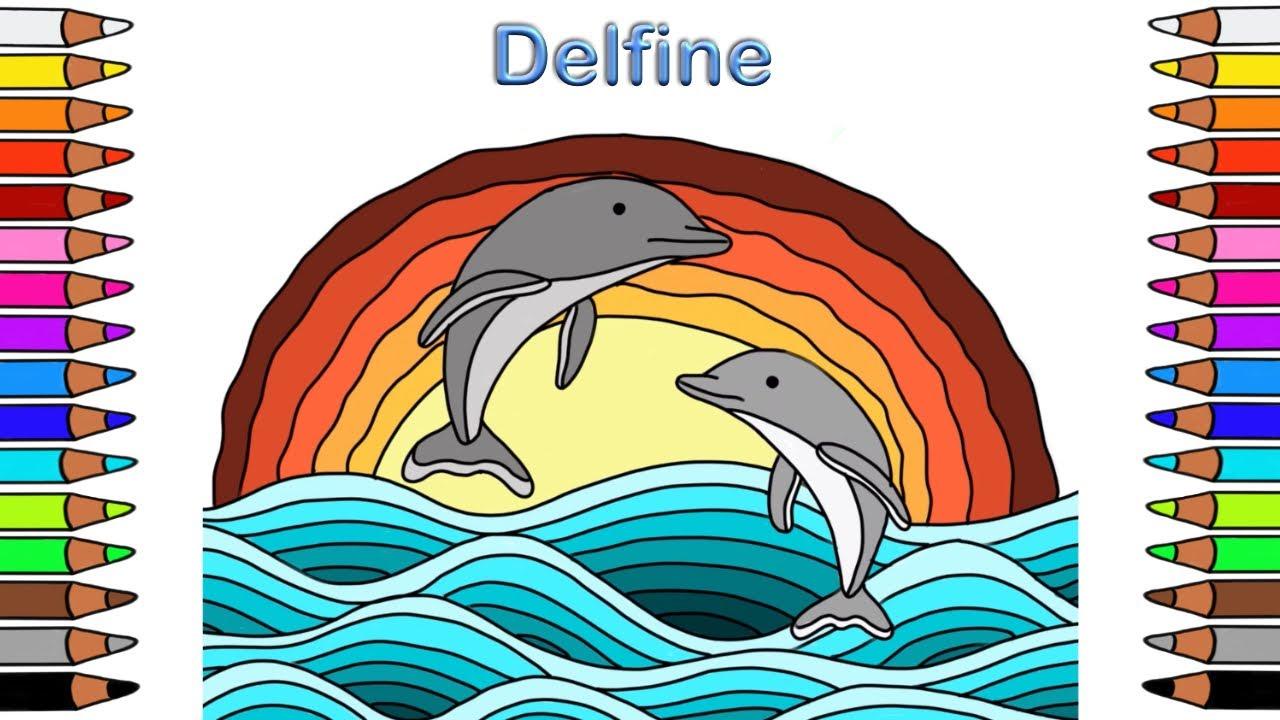 Ausmalbilder für Kinder🎨 Malbuch für Kinder🎨Define🎨Coloring book kids 🎨 coloring 🎨 dolphins