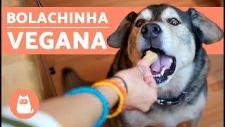 biscoito para cachorros fácil com 3 ingredientes veganos