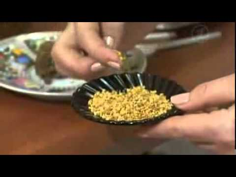 Лечебные свойства травы шалфея и противопоказания к применению