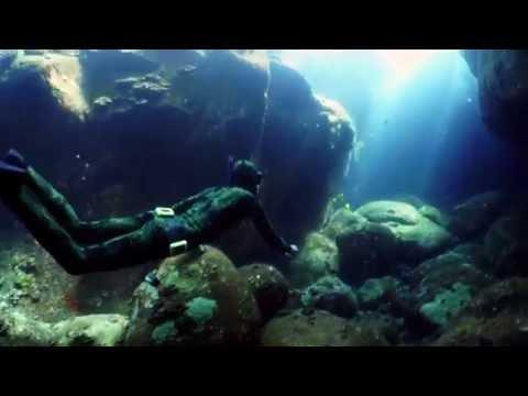 Hawaii Freediving Excursions - Kona Freedivers