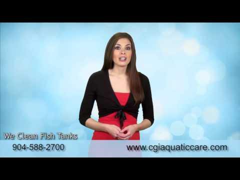 Jacksonville, FL. Fish Tank Service Prices | 904.588.2700 | Jacksonville, Florida.