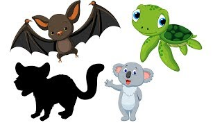Animals Puzzle For Kids & Real Animal For Children ❤ Wow Toddlers ❤ Learn Name and Sound Wild Animal