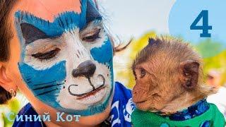 """Синий Кот читает детям историю про обезьянку из книги """"Мир животных"""""""