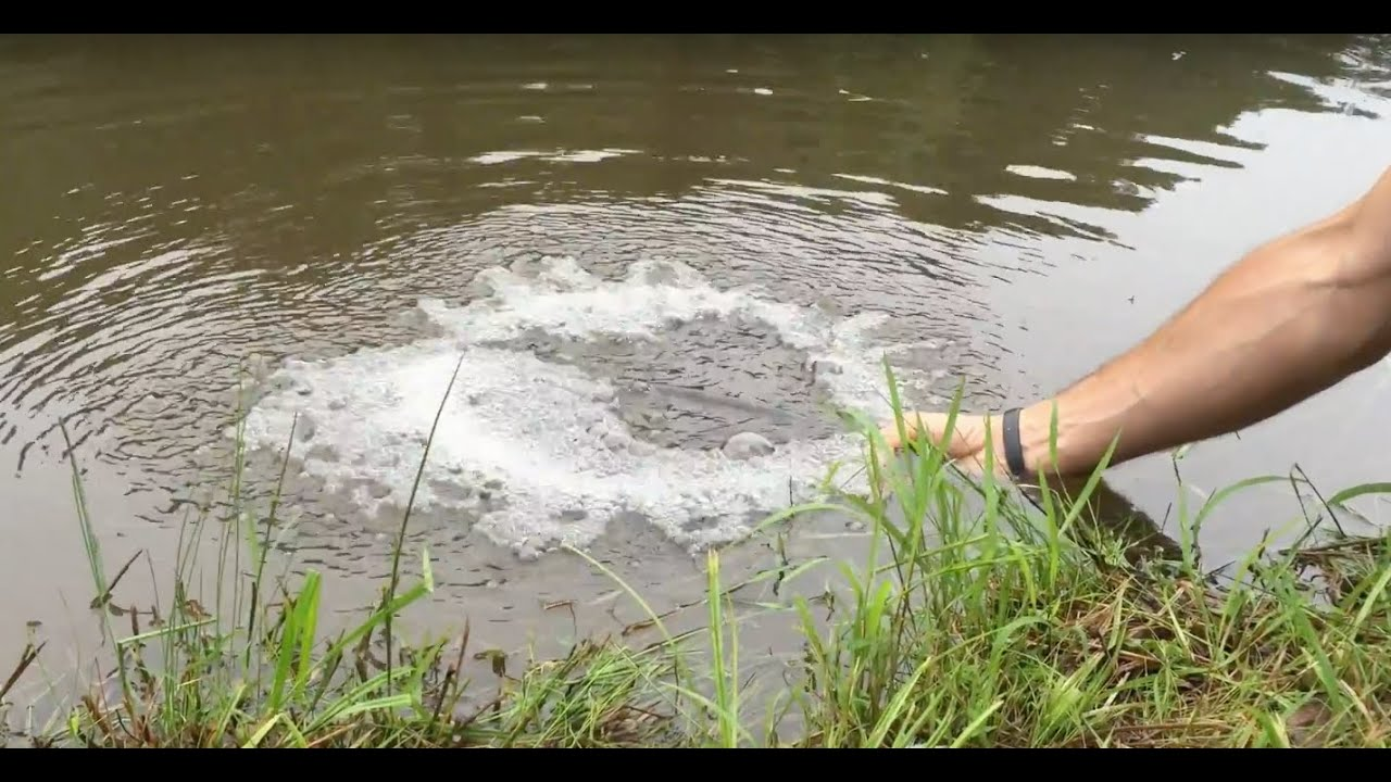 Diy Pond Aeration Improve Your Pond Water Quality Plus Big Max Vs Hiblow Aerators