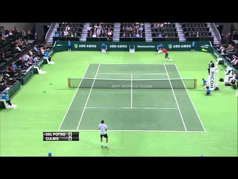 Rotterdam 2014 Friday Hot Shot Gulbis