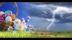 Wetter heute: Die aktuelle Vorhersage (12.04.2020 - Ostersonntag)