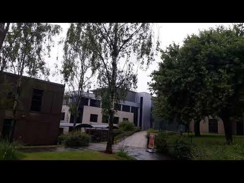 The University of York.