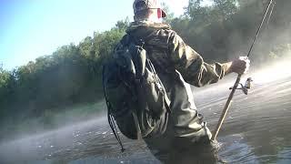 Ловил щуку и окуня а поймал Летняя рыбалка на спиннинг Июль 2021