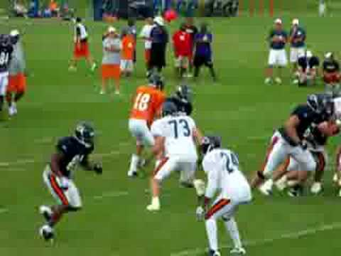 Garrett Wolfe Bears Training Camp 2008 Bourbonnias TD