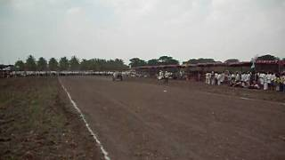 bull-ox cart race giriyapura 16