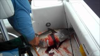 Chatum Tuna July 28, 2012