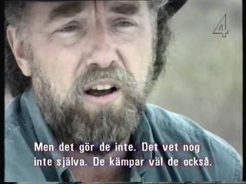 Ufo - okända vittnesmål TV4