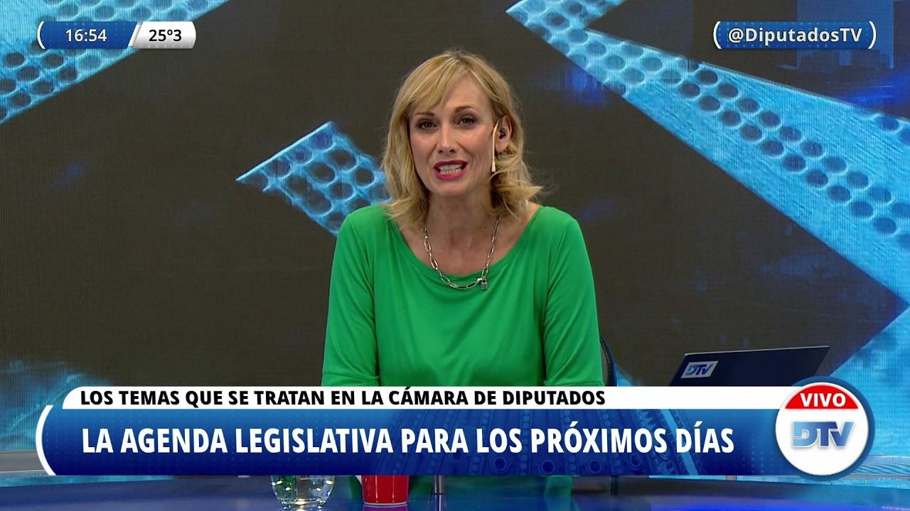 DTV - El Análisis con Karin Cohen - Programa 13/04/2021