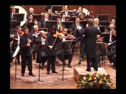 Max Bruch: Double Concerto for Clarinet & Viola 1 mov.