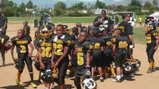 POMONA STEELERS JR.CLINIC 2010 LEAGUE CHAMPS