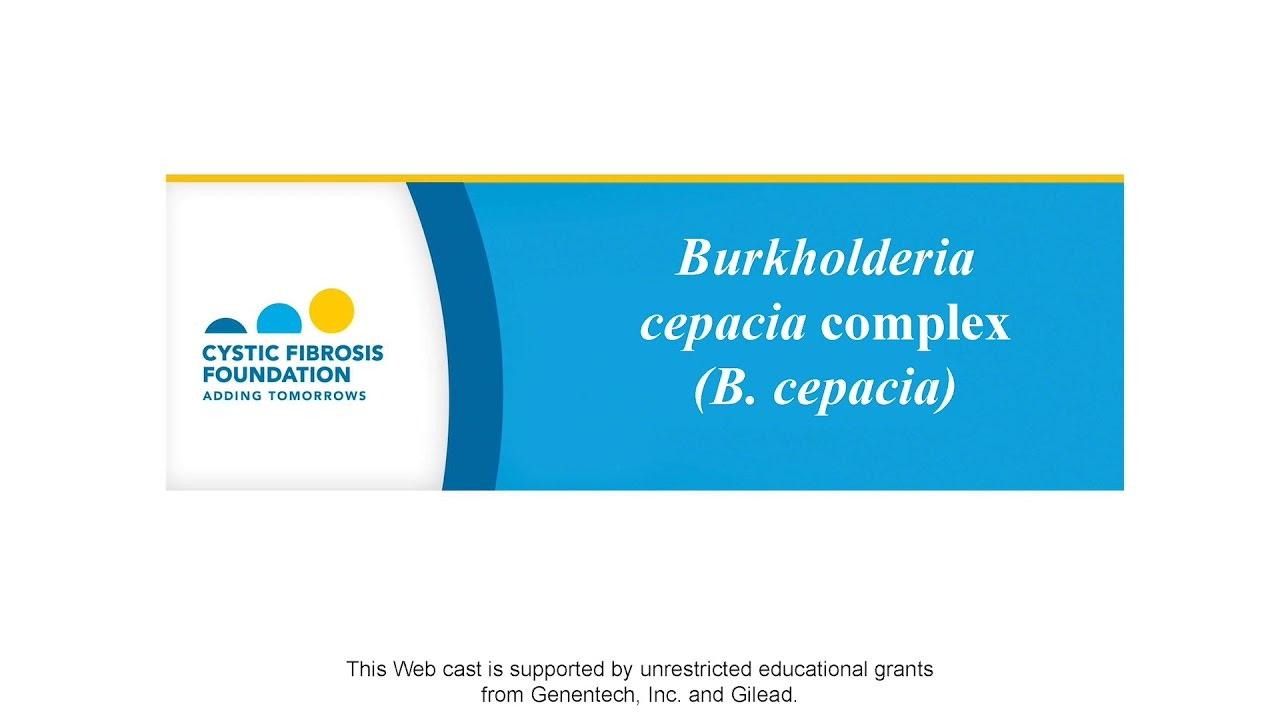 Burkholderia Cepacia Complex (B  Cepacia)   CF Foundation