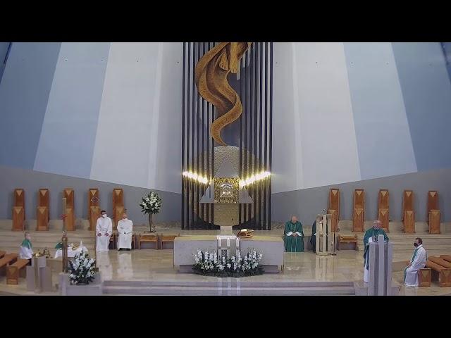 XV Niedziela zwykła - kazanie 12.07