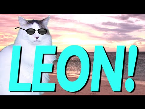 Happy Birthday Leon Epic Cat Happy Birthday Song Youtube