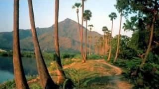 nithyasree mahadevan - thiruppavai - track  9 - 10 - 11 - 12 - 13