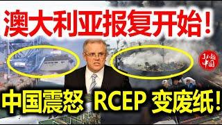 """11月24日!澳大利亚报复开始!中国港口惊现万吨巨兽!工作人员大喊:""""快跑!不跑都得死!""""世界不敢相信澳大利亚敢这么做!"""