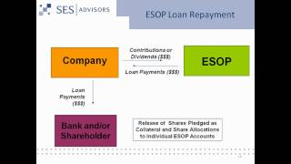 Introduction to ESOPs