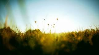 Blackmill Feat. Veela - Life (Full Version)