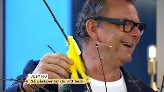 Piffigt påskpynt på programmet - Nyhetsmorgon (TV4)