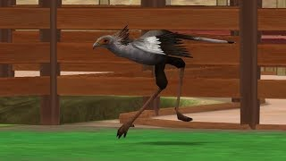 Zoo Tycoon 2: African Adventure Campaign - The Secretary Bird