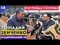 Геннадий Зенченко. Вся правда о коровах / Модернизация KZ