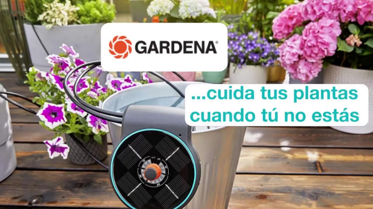 ¿Cómo ahorrar agua al regar las plantas? | AquaBloom de Gardena