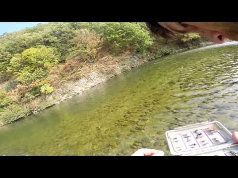 Fly Fishing In Gangwando South Korea