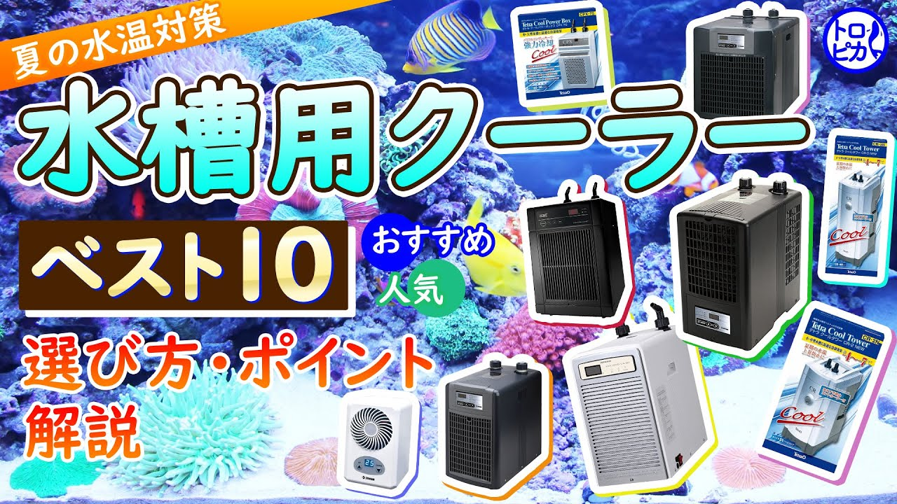 【夏の水温対策】水槽用クーラーベスト10!選定方法をプロが解説!