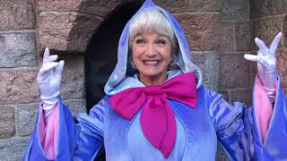 Fairy Godmother wants to meet Mama Odie