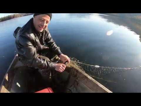 Рыбалка на чудесных
